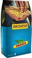 """DKC 6050 """"Monsanto"""" (DEKALB)"""