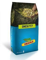 """DKC 6777 """"Monsanto"""" (DEKALB), фото 2"""