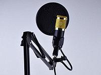 Студийный микрофон M-800-U / Конденсаторный Микрофон / Микрофон для блогеров, фото 1