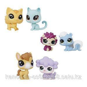 Hasbro Littlest Pet Shop Набор, 2 пета.