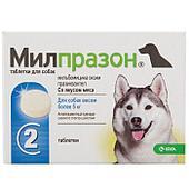 Антигельметик Милпразон 12,5 мг/125 мг для собак более 5 кг, KRKA - 1 табл.