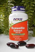 Экстракт босвеллии, 500мг, 90 растительных капсул.   Now Foods