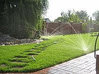 Система полива огорода