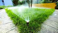 Система полива газона насос
