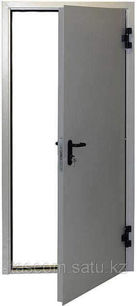 Железная дверь ДП1