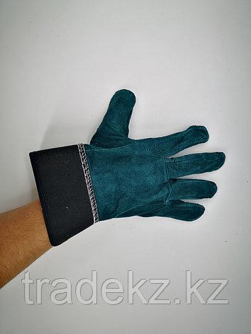 Перчатки спилковые. средства индивидуальной защиты, фото 2