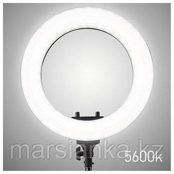 Лампа кольцевая d-48см (в чехле)