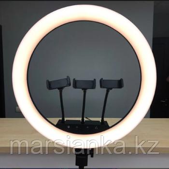Лампа Кольцевая (три держателя)
