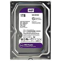 Жесткий диск для видеонаблюдения 1000 GB