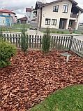 Кора соснова\ лиственницы , в больших мешках 60 литров, фото 5