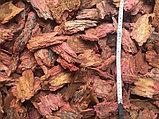 Кора соснова\ лиственницы , в больших мешках 60 литров, фото 7