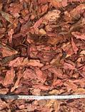 Кора соснова\ лиственницы , в больших мешках 60 литров, фото 8