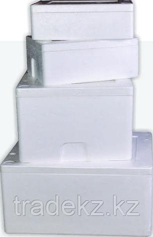 Термобокс, термоконтейнер, объем 36 л., в комплекте с сумкой, фото 2
