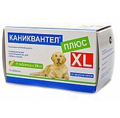 Антигельминтное средство Каниквантел Плюс XL для собак и кошек, Марамед - 1 таблетка