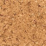 Линолеум  Комфорт, фото 2