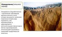 Гиподерматоз крупного рогатого скота