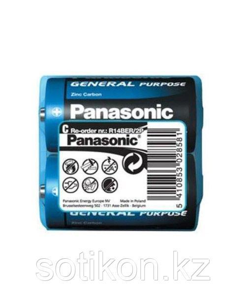 Panasonic R14BER/2P