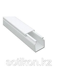 DKC 00323