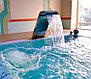 Водопад ниагара матовый для бассейна 600 x 500 мм, фото 7
