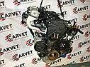 Двигатель Hyundai Getz. G4ED. , 1.6л., 105л.с., фото 2