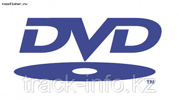 Диски DVD+RW Track 4.7gb 4x cake box (25)