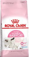 Корм для котят от 1 месяца до 4 месяцев, Mother & Babycat