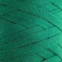 Пряжа-шнур 'Ribbon' 40 полиэстер, 60 хлопок 125м/250гр (759 зелёный)