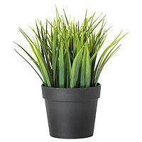 Искусственное растение в горшке ФЕЙКА 9 см ИКЕА, IKEA, фото 1