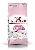 Корм Royal Canin Mother & Babycat для котят, беременных и кормящих кошек - 400 г