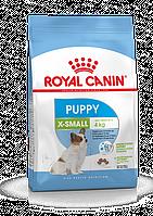 Корм Royal Canin X-Small Puppy Junior для щенков миниатюрных пород - 1.5 кг