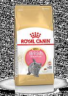 Корм Royal Canin British Shorthair Kitten для котят Британской короткошерстной кошки - 2 кг