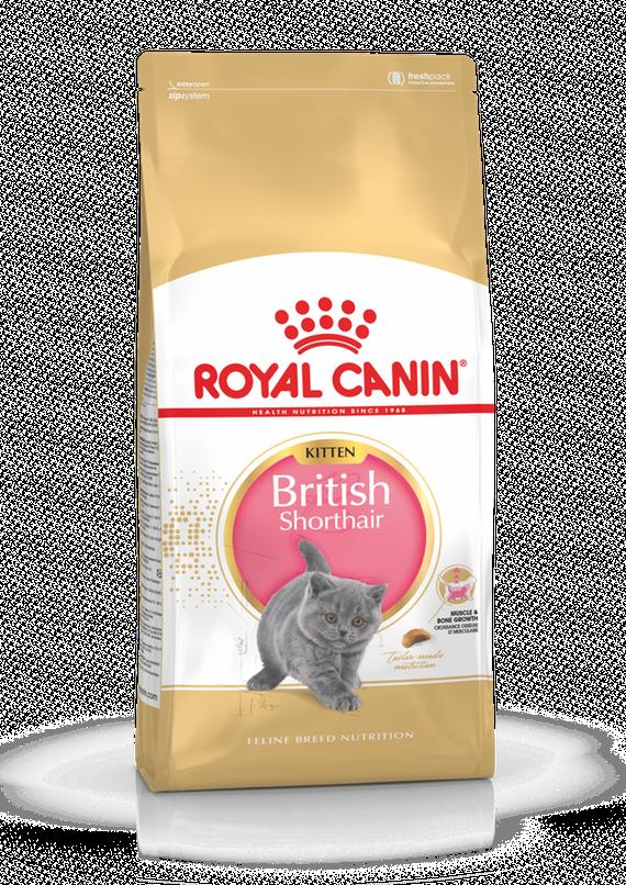 Корм Royal Canin British Shorthair Kitten для котят Британской короткошерстной кошки - 10 кг