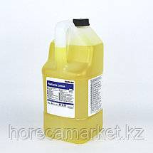 Пантастик лемон (5кг) / Pantastik Lemon, фото 3