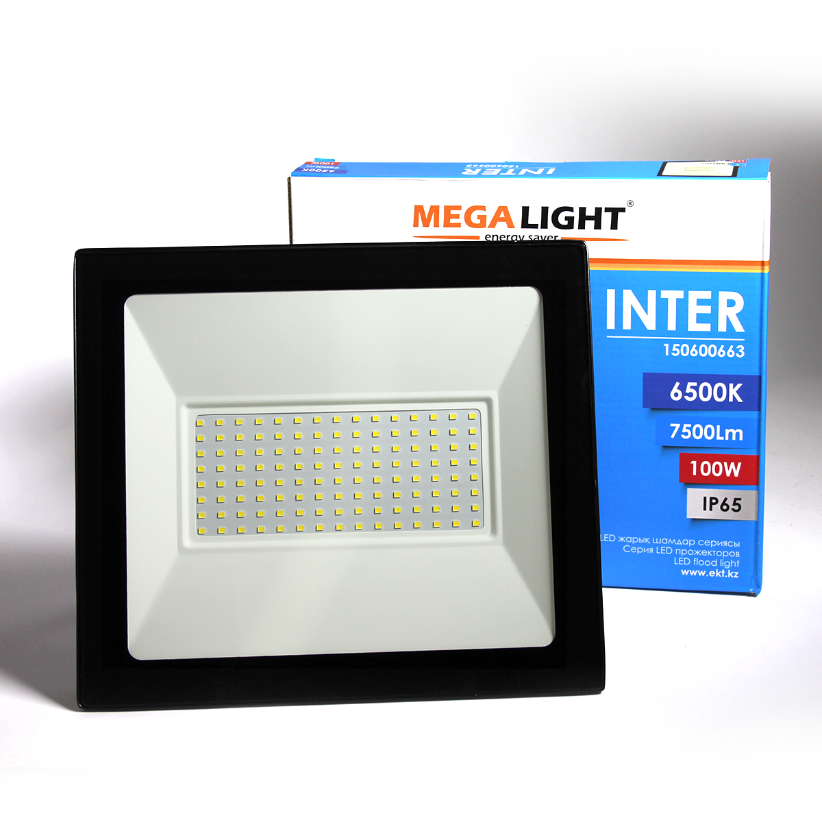 LED Прожектор INTER 100W 6500K IP65 MEGALIGHT(10)