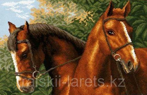 """Рисунок на канве для вышивания крестом """"Пара лошадей"""" арт. 0608"""