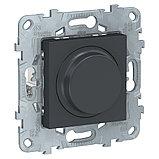 UN LED диммер повор-наж,универ, антрацит /NU551454/, фото 2