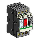 Авт.выкл. с комб.расцеп.4-6.3А /GV2ME10AE1TQ/, фото 3
