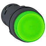 Кнопка 22мм 24В зеленая с подсв. /XB7NW33B1/, фото 2