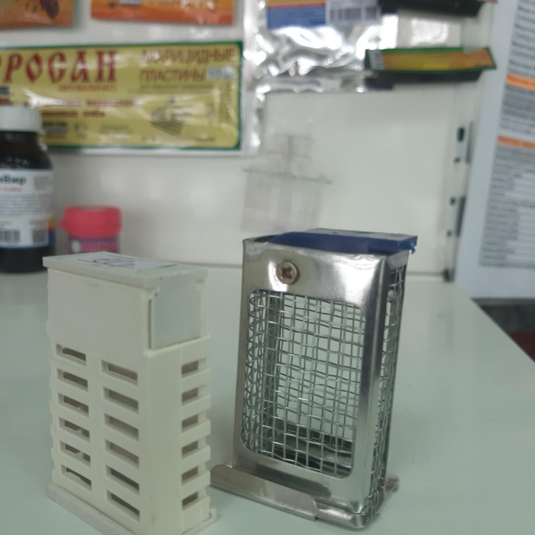 Клеточка Титова металлическая