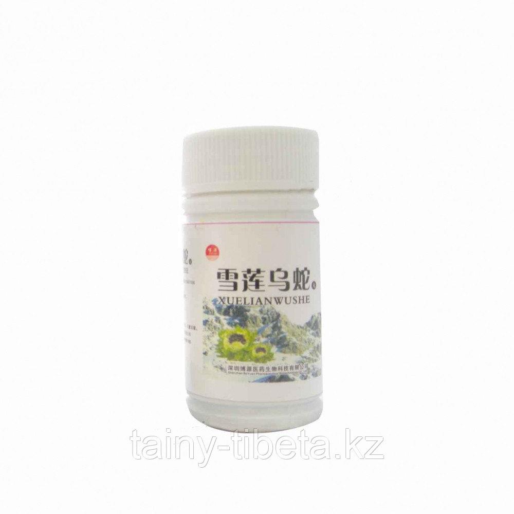 Таблетки для лечения суставов Снежный Лотос