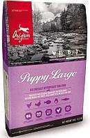 Беззерновой корм Orijen Puppy Large для щенков крупных пород - 11.4 кг