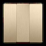 Набор клавиш для выключателя трехклавишного /WL10-SW-3G-CP (шампань рифленый), фото 2