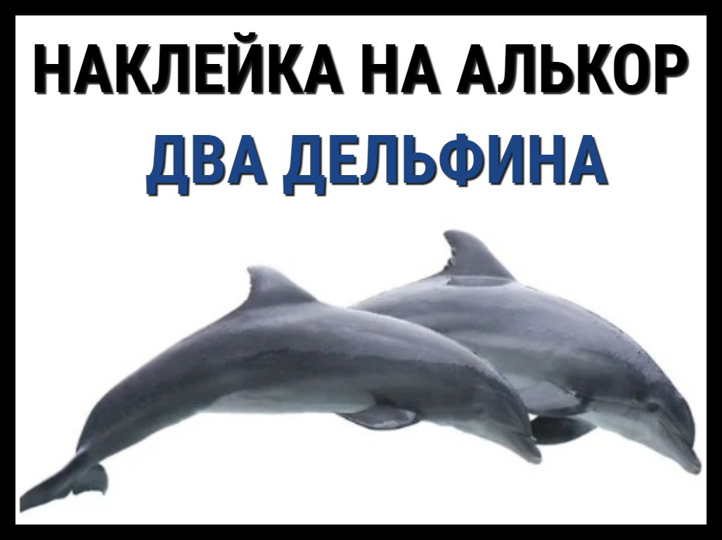 Наклейка Два дельфина на алькорплан ( ПВХ пленка)