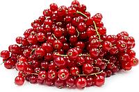 Смородина красная Европа (в упаковке 125гр.)