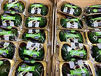 Авокадо Хасс в упаковке (2шт)