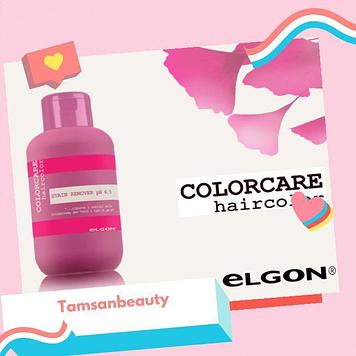 Stain remover очиститель краски Elgon