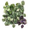 Искусственное растение ФЕЙКА зеленый/сиреневый, 26x26 см ИКЕА, IKEA