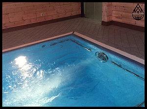Противоток Jet Swim для бассейна (лайнер)
