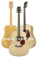 Акустическая гитара Agnetha AAG-E140
