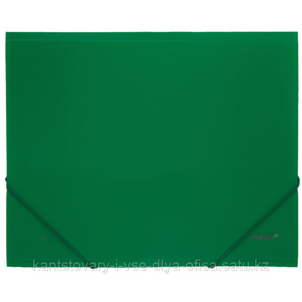 Папка A4 с резинкой непрозрачная зеленая 0.50 мм Proff. Next